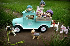 Spring Break ~ Road Trip (TutuBella) Tags: realpuki dolls fairyland daisydayes puppy puppies pups iplehouse dog knitted hats by ssmartraggs tinybjd happyspring springtime fun