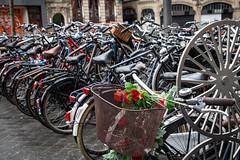 Amsterdam - 4-3-19-8