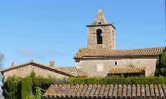 OLIVES (Joan Biarnés) Tags: olives pladelestany girona 308 panasonicfz1000