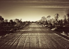 just because my path is different doesn't mean I'm lost (gro57074@bigpond.net.au) Tags: guyclift dawn f80 2470mmf28 tamron d850 nikon 2019 april earlymorning sepia dirtroad dirt road unsealed country nsw outback lightningridge