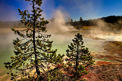 Black Opal Pool, Biscuit Basin, Yellowstone National Park, Wyoming, USA (klauslang99) Tags: klauslang yellowstone national park wyoming buscuit basin black opal pool water trees vapour vapor landscape