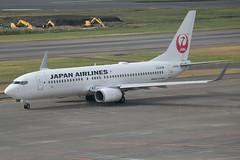 JA339J B737-800 Japan Airlines (JaffaPix +5 million views-thanks...) Tags: ja339j b737800 japanairlines jal jaffapix davejefferys tokyoairport japan aircraft airplane aeroplane aviation flying flight runway airline airliner hnd haneda tokyohaneda hanedaairport rjtt planespotting 737 b737 b738 boeing