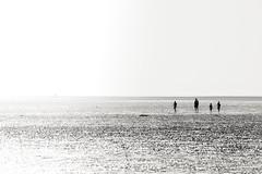 The Beach (shaunhilton147) Tags: england merseyside sandy sand sea blackandwhite monochrome minimal sunny nikon beaches beach southport