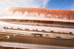 Why Does a Wedding Ring Have the Hardest Stone (Thomas Hawk) Tags: america newmexico oldsmobile route66 usa unitedstates unitedstatesofamerica abandoned auto automobile car emblem junkyard
