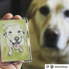#wandklexkundenfoto, Auftragsarbeit nach Kundenfoto, mit model Mr Labbi! 😍 Danke! #Repost @aleanddogs ・・・ I proudly present you THE LABBIGNET A beautiful magnet with Mr Labbi's derpy-wonderful appearance. Made by the lovely @wandklex ❤️ # (wandklex Ingrid Heuser freischaffende Künstlerin) Tags: ifttt instagram wandklex ingrid hesuer art kunst etsyda dawandada etsyseller dawandaseller watercolor watercolour meetthemaker behindthescenes kunstatelier artwork malerei artist etsyfinds etsygifts etsyfindes dawandafinds aqaurell