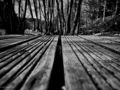 Lines (Anja Schruba) Tags: bw schwarzweis linien holz brücke bach