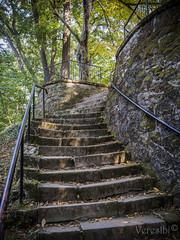 Pilisszentkereszt Szent kút (VeresIbi) Tags: pilis forest erdő epl5 steps nature natural natur olympusepl5 olympus outdoor olympusm1442mmf3556iir okt kéktúra zuiko mzuiko magyarország természet túra