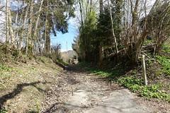 Bluffy @ Hike to Château de Menthon, Rochers des Moillats & Ermitage de Saint-Germain (*_*) Tags: 2019 printemps spring april afternoon europe france hautesavoie 74 annecy savoie bornes hiking mountain montagne nature randonnee walk marche bluffy