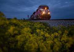 Spring Blue Hour (WillJordanPhoto) Tags: trains new lebanon indiana railroad road railway farm flower spring night