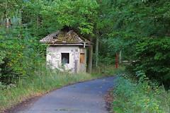 Bogensee_(CP) - 385 (sigkan) Tags: deutschland brandenburg bogensee lostplaces nikoncoolpixp520 vondetkanaccount