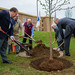 """Governor Baker participates in the 20,000th tree planting as part of the Greening the Gateway Cities Program • <a style=""""font-size:0.8em;"""" href=""""http://www.flickr.com/photos/28232089@N04/46764864115/"""" target=""""_blank"""">View on Flickr</a>"""