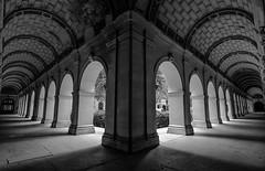Musée des Beaux Arts, Lyon (Laetitia.p_lyon) Tags: fujifilmxt2 lyon muséedesbeauxarts mbalyon commba mba noiretblanc nb blackandwhite bnw bw monochrome monochromatic palaissaintpierre