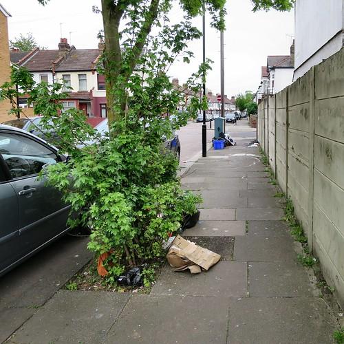 Mafeking Road - Dumping Multiplied