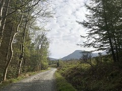 (John D McDonald) Tags: donardpark donard slievedonard newcastle mournes mournemountains mountainsofmourne countydown codown down southdown northernireland ni ulster geotagged iphone iphone7plus appleiphone appleiphone7plus drinahilly drinahillywalk