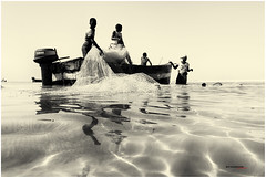 escena de pesca en Vilankulo (bit ramone) Tags: vilankulo vilanculo mozambique äfrica pesca fishing viajes travel blancoynegro blackandwhite bitramone agua water red net elitegalleryaoi bestcapturesaoi aoi