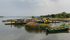 Ferry Crossing At Paraa (2019 AFR D12-0002) (Butterflies in Still Air) Tags: ferrycrossingatparaa ferrycrossing ferry crossing paraa