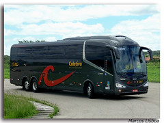 "Irizar i6 390 Scania K400 (Marcos A.Lisboa) Tags: حافلة λεωφορείο รถบัส 鉸接式客車 ավտոբուս автобус autobus autobusa autobusai autobuses autobusos autobusy autocarro autocarros avtobus bendy bendies bus buses buss bussen busstation coach coaches coletivo coletivos conforto estação executive executivo express expresso interdepartamentales irizar machimbombo microlete obusse omnibusse onibus ônibus otobüs passeio passeando pb road rodoviaria rodoviario rodoviária scania shuttle shuttles sightseeing stasjon terminal ""tocatoca"" tour tourism transport transporte transportes travel travelling turismo urbano viagem viajando vehicle veículo veicolo"