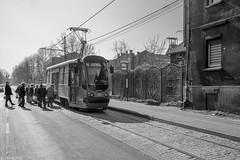 Ongemakkelijk instappen (Tim Boric) Tags: mysłowice świerczyny tram tramway streetcar strassenbahn tramwaj interurban vicinal überlandbahn modertrans moderus alfa ztm halte stop reizigers passengers
