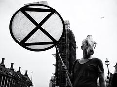 Extinction (Feldore) Tags: london protestor protest extinction rebellion westminster skull animal flag sinister march parliament big ben feldore mchugh em1 olympus 1240mm climate change england english street
