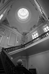 (Laetitia.p_lyon) Tags: fujifilmxt2 lyon muséedesbeauxarts mba mbalyon commba palaissaintpierre escalier escaleras stairs noiretblanc nb blackandwhite bnw bw monochrome monochromatic
