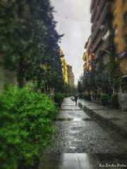 Abril aguas mil. (luissnchezmolina) Tags: talavera agua lluvia españa spain urbano primavera