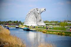 the Kelpies (NengHetty) Tags: falkirk helix thehelix canal forthandclydecanal canoneos100d rebelsl1 scotland kelpies baron duke sculpture statue horse pony waterspirit helixpark