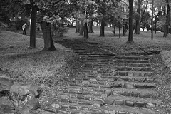 steps and the old (avawoodworth) Tags: tokyo japan rain rainy morning bw blackandwhite monochrome mono outside