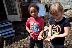worms (greenelent) Tags: kids communitygarden worms brooklyn nyc people 365 photoaday