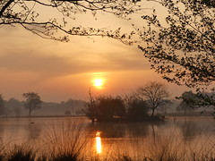 Richmond Park sunrise (Charos Pix) Tags: sunrise richmondpark penponds alder heronisland
