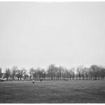 Misty Greenwich Park thumbnail