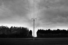 Electric field (Franck gallery) Tags: lines lignes blackwhite noirblanc electric électrique poteau pole field champs d90