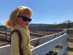 At the farm (Foxy Belle) Tags: doll tammy ideal farm vintage sunglasses outside spring nature public