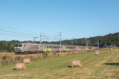 La BB 7309 en tête de l'Intercités 14140 Bayonne - Toulouse (Sylvain COSTES) Tags: bb7200 comminges corail locomotive train railway bayonne toulouse