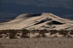 20190318 Death Valley-0314.jpg (Mark Harshbarger Photography) Tags: california deathvalleynationalpark sand desert nationalpark sanddune dunes eurekadunes places deathvalley