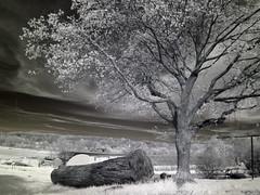 IMG_0050 (Dan Correia) Tags: granby infrared clouds barn wideangleadapter 15fav topv111 510fav