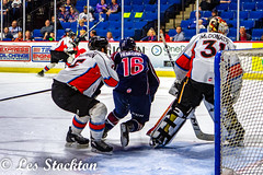20190424_20265902-Edit.jpg (Les_Stockton) Tags: tulsaoilers sport kansascitymavericks hockey jääkiekko jégkorong xokkey eishockey haca hoci hokej hokejs hokey hoki hoquei icehockey ledoritulys íshokkí tulsa oklahoma unitedstates