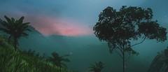 (nuvoIari) Tags: farcry5 hoursofdarkness vietnam tree trees jungle mountains sky fog mist