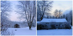 Snowy April Day (genesee_metcalfs) Tags: collage april spring homestead snow trees