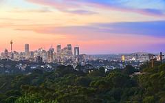 25/206 Victoria Road, Bellevue Hill NSW