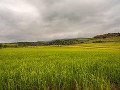 Italy - Sardinia -  Villanovafranca - Nuraghe Su Mulinu (Greg7579) Tags: italy sardinia