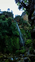 (tetuani1399) Tags: waterfall cascada trekking senderismo mountain montana monte montaña rio river parque paisaje verde blanco naturaleza árbol agua park landscape green white nature tree water coth5 national
