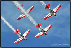 Aeroshell Aerobatic Team (Bob Garrard) Tags: eaa airventure 2010 north american at6 texansharvards aeroshell aerobatic team osh kosh
