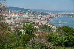 2019-apr-Hungary-DSC01788 (RussianSparrow) Tags: hungary budapest gellert