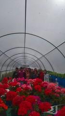 Visita-Centro-Ocupacional-Albasur-Asociacion-San-Jose-190425-0047 (Asociación San José - Guadix) Tags: albasur centro ocupacional manipulados asociación san josé guadix abril 2019