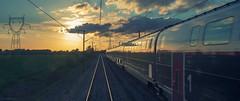On The Horizon (sdupimages) Tags: inoui panoramique panorama pov perspective landscape paysage ciel nuages clouds sky horizon reflection goldenhour light lumière couchédesoleil sunset lgv highspeedtrain sncf tgv voieferrée railroad train