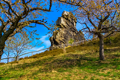 Harz im Frühling (Maik Kregel) Tags: maikkregel sony harz a6000 frühling teufelsmauer