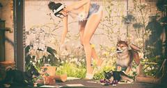 Summer Days (Stefania Giano) Tags: lelutka glamaffair doux ascendant euphoric kaithleens noir reign lepoppycock thor jian epiphany kustom9 collabor88