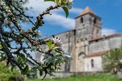 02-Eglise de Léguillac (Alain COSTE) Tags: 2019 ciel dordogne eglise floraison léguillacdecercles nikon périgordvert printemps village france
