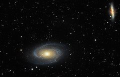M81 and M82 Bode's Galaxy and the Cigar Galaxy (rex.on.life) Tags: stars starcluster galaxy startrails skywatcher nikon messier lookup sleepcanwait meade astronomy astrophotography