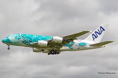 F-WWAF // JA382A All Nippon Airways Airbus A380-841 MSN 263 (Florent Péraudeau) Tags: fwwaf ja382a all nippon airways airbus a380841 msn 263